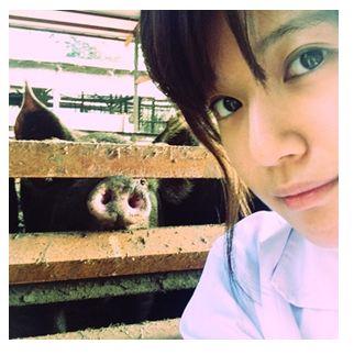 養豚場で働くことになった前田敦子モノマネ芸人のブログがリアルすぎる