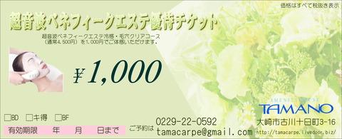 1,000円エステチケット