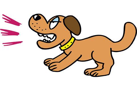 【クズ】うちの犬が散歩中よく人を噛むんだがwwwwwwww
