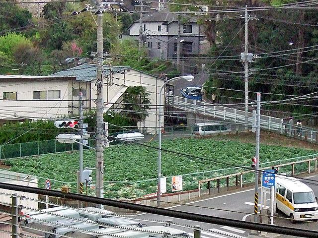 新横浜駅って田舎すぎない??田舎者の俺が思ってた横浜と違うんだが