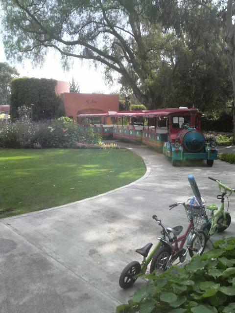 公園内を一周する汽車もあり。