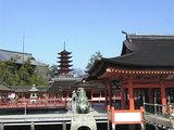 厳島神社・女装子&MTF