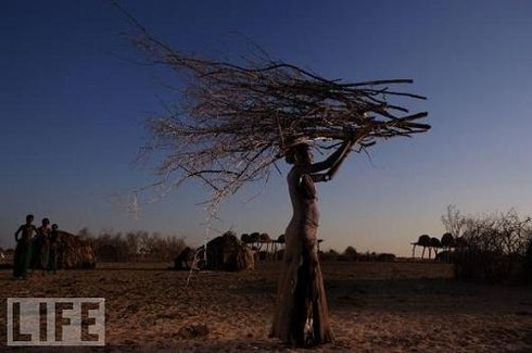 Dassanech Woman With Branches