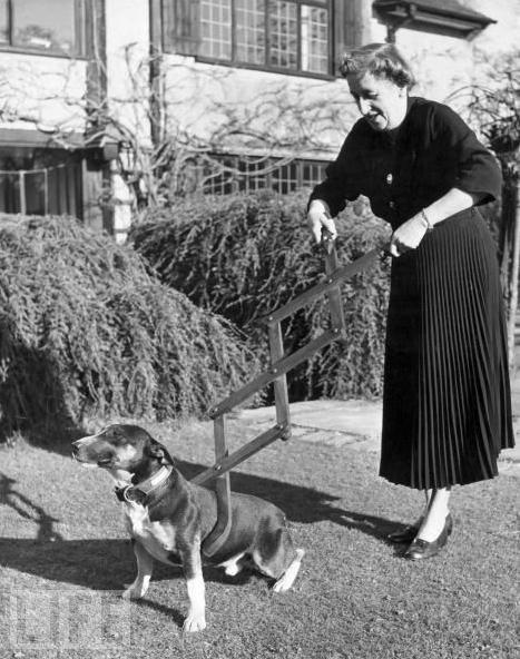 Dog Restrainer, 1940