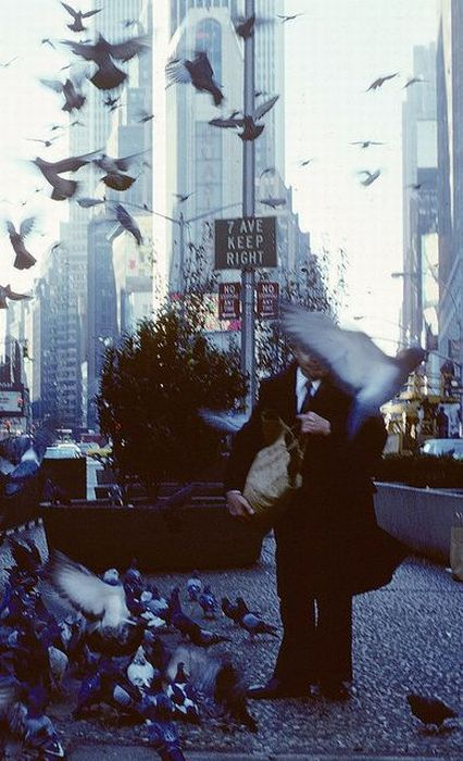 new_york_21