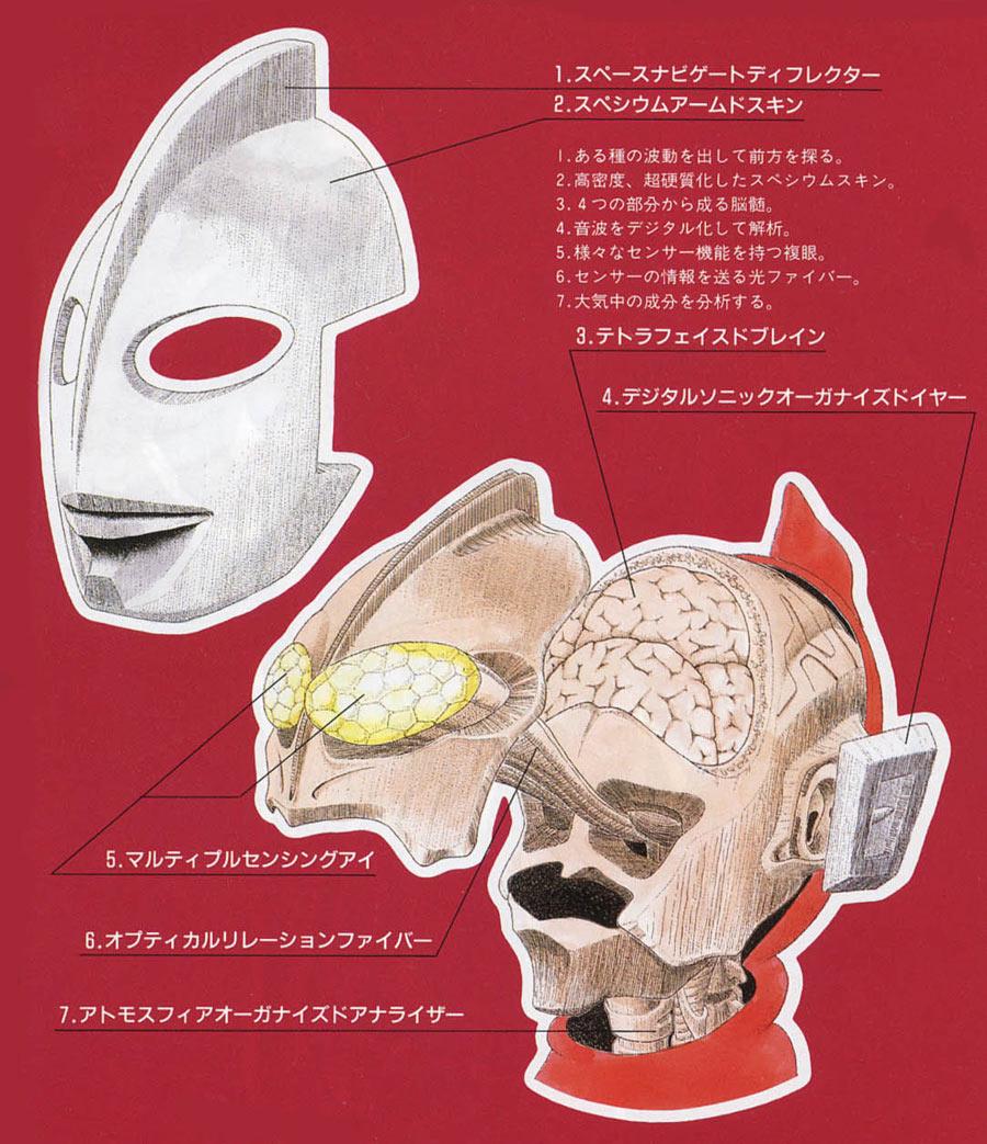 まんこ解剖 dfb50e01