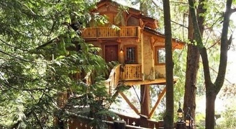 beautiful_tree_houses_11