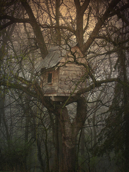 beautiful_tree_houses_12