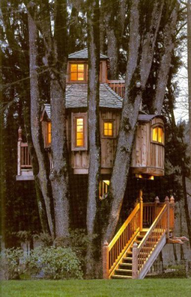 beautiful_tree_houses_14