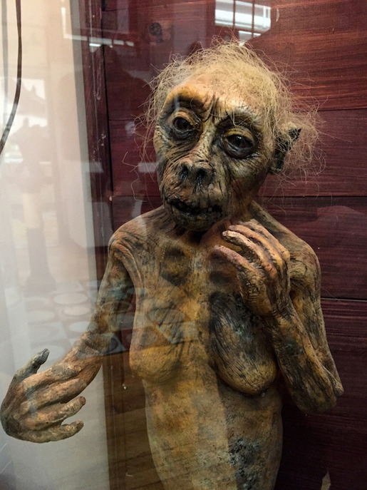 International-Cryptozoology-Museum4