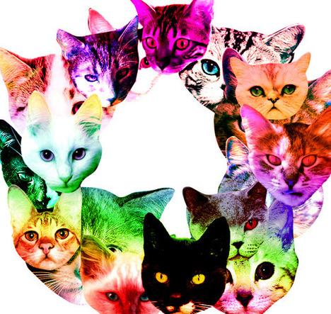 blog-bu_cat19