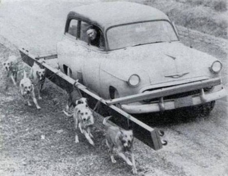 old-funny-and-weird-photos17
