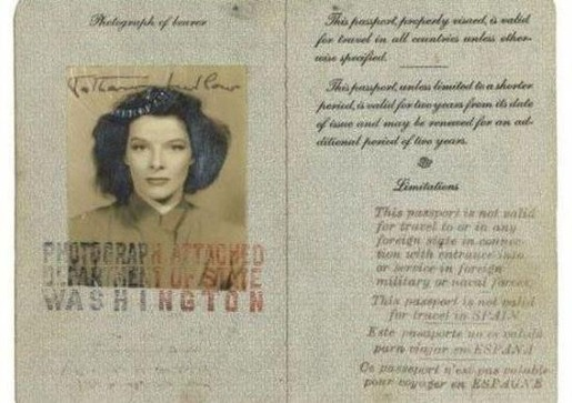 passport_of_iconic_figures_17