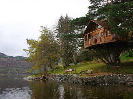 beautiful_tree_houses_03