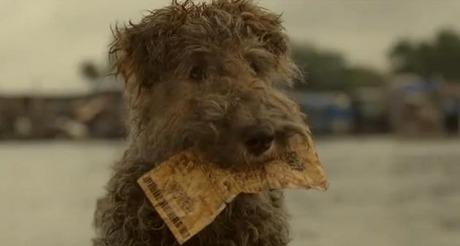 'Lucky Dog'