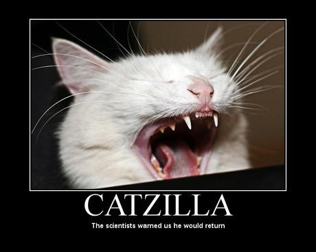 Catzilla_10