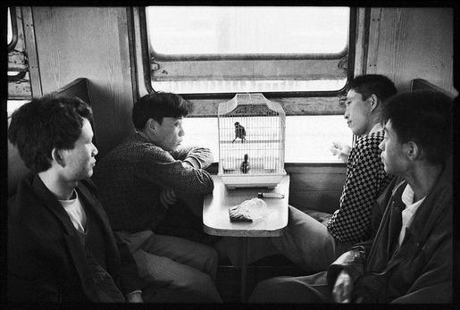 wang-fuchun-02
