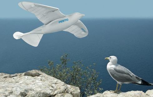 festo-smartbird-03252011