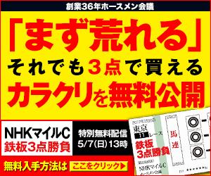pngホースメン:NHKマイルC300_250
