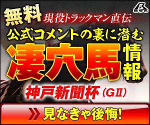 png暴露王:神戸新聞杯300_250