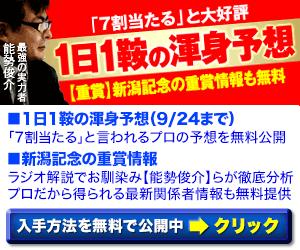 pngホースメン会議:新潟記念300_250
