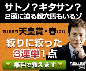 PNGワールド:天皇賞春300-250
