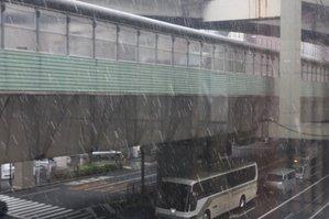 雪です。見えますかね…。