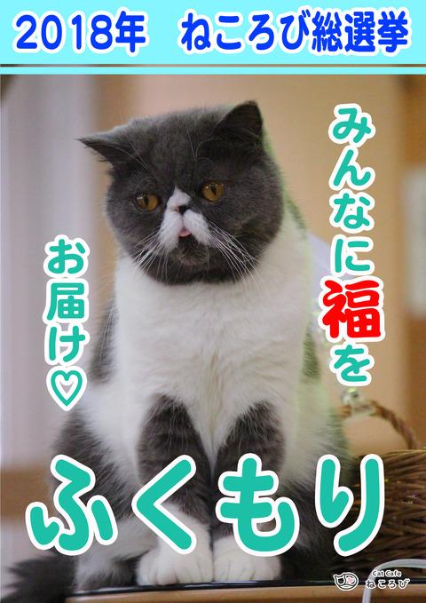総選挙2018ふく