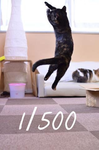 04_シャッタースピード500