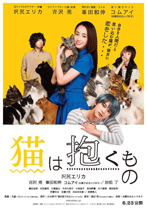 猫抱く_本チラシ・ポスター表面[1](1)