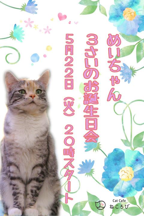 めいポスター
