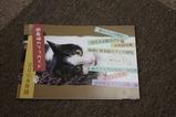 猫カフェガイド2008年