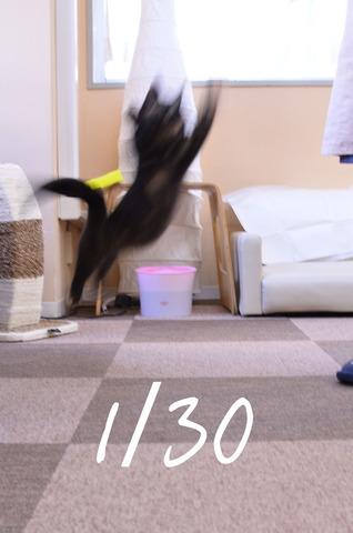 03_シャタースピード30