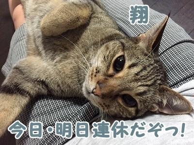 翔 (76)
