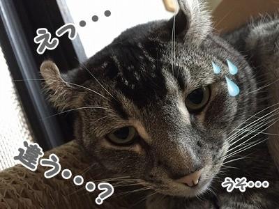 銀 (87)