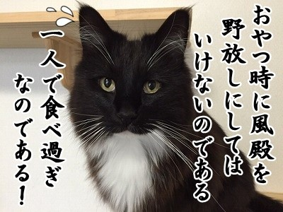勇 (31)