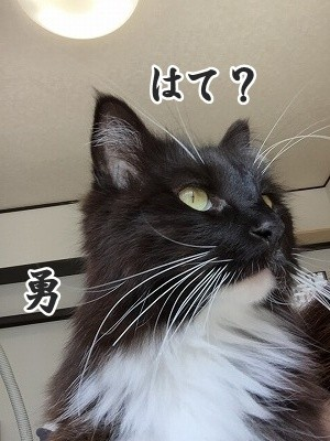 勇 (23)
