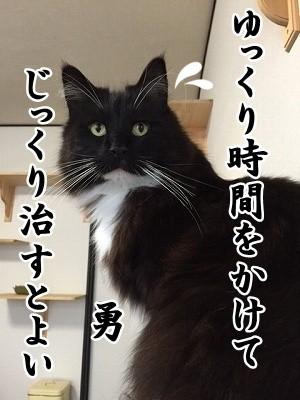 勇 (35)