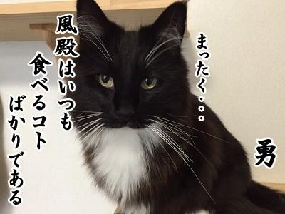 勇 (30)