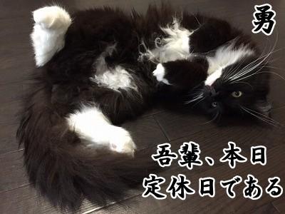勇 (37)