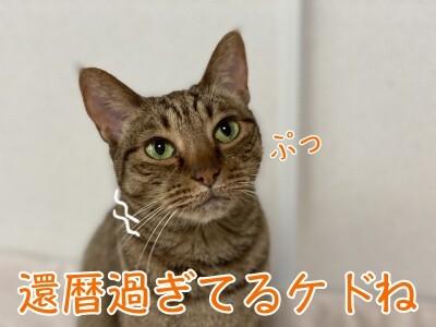 みさき214