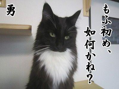 勇 (9)