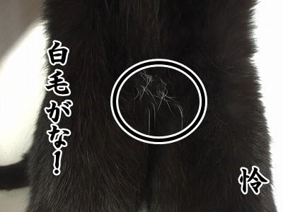 怜 (6)