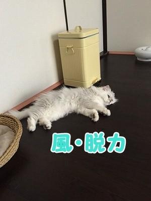 風 (72)