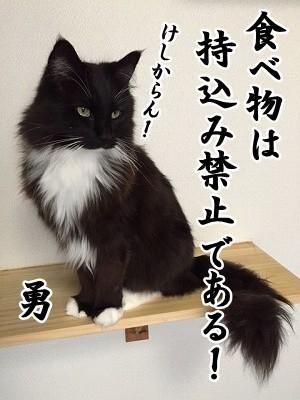 勇 (25)