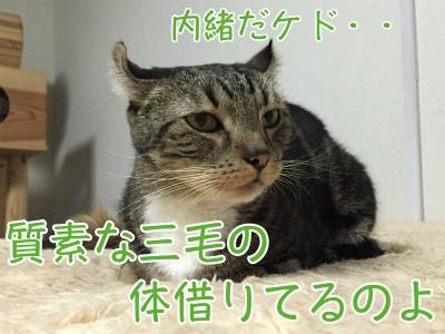 かな168