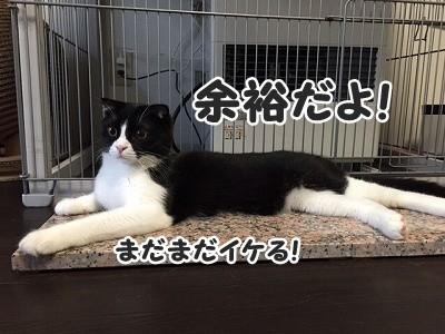 澪 (24)