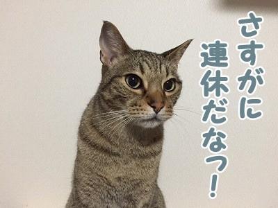 翔 (82)