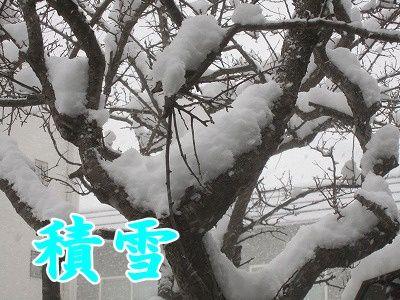 その他 (10)