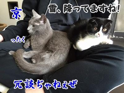 澪 (9)